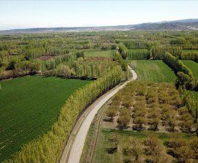 2B arazilerden gelir beklentisi 3 yılda 1,7 milyar TL